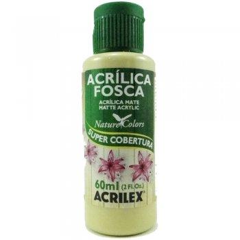 TINTA ACRILEX  ACRIL.FOSCA 60 ML 904 OCRE