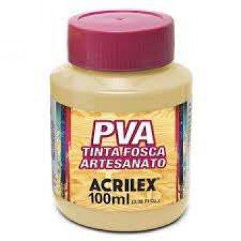 TINTA ACRILEX FOSCA P/ ARTES. 250 ML 538 AM. PELE